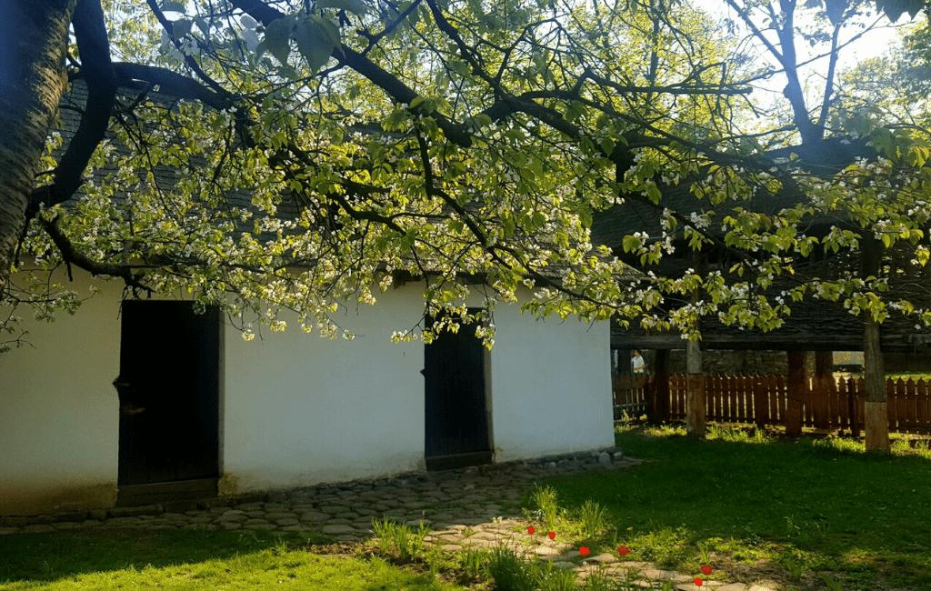 National Village Museum